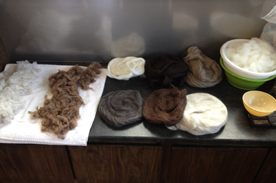 Cleaned locks on the far left and a variety of animal fibers (STRONGFELT STUDIO,  2014)