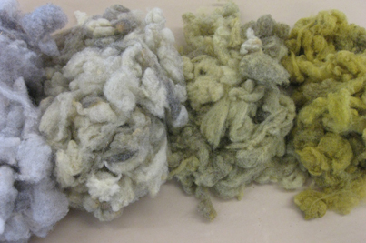 Weld dye applied to gray wool fiber in varying ratios of dye material to weight of fiber (Felt Technical/Felt Innovative Concentration, Penland School of Crafts, 2011)
