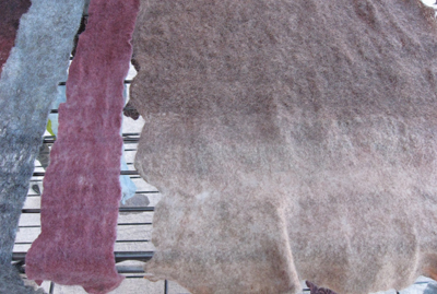 Partial felt sheets dyed with indigo and madder revealing the difference in color when madder dyed sheets are over dyed in indigo versus when indigo dyed sheets are over dyed in madder (workshop at Taos Wool Festival, Taos, NM, 2011)