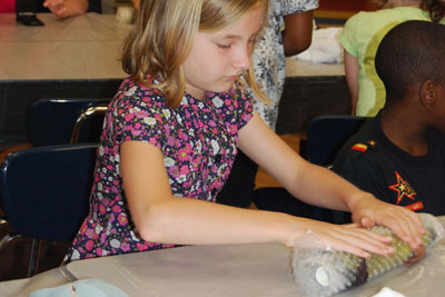 Rolling the wool fibers in bubble wrap to initiate their interlocking and matting into felt