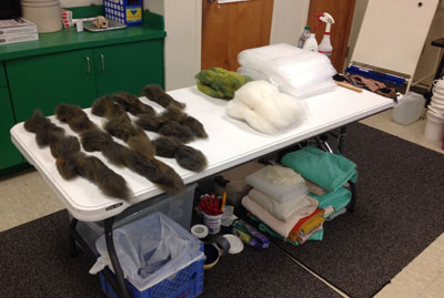 Bringing the felt studio into the classroom..including all the wool weighed out for the surface area the students will layout  and lots of towels!